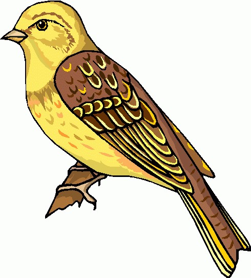 Bird clipart clipart cliparts for you