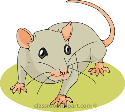 Free mouse clipart clip art pictures graphics illustrations