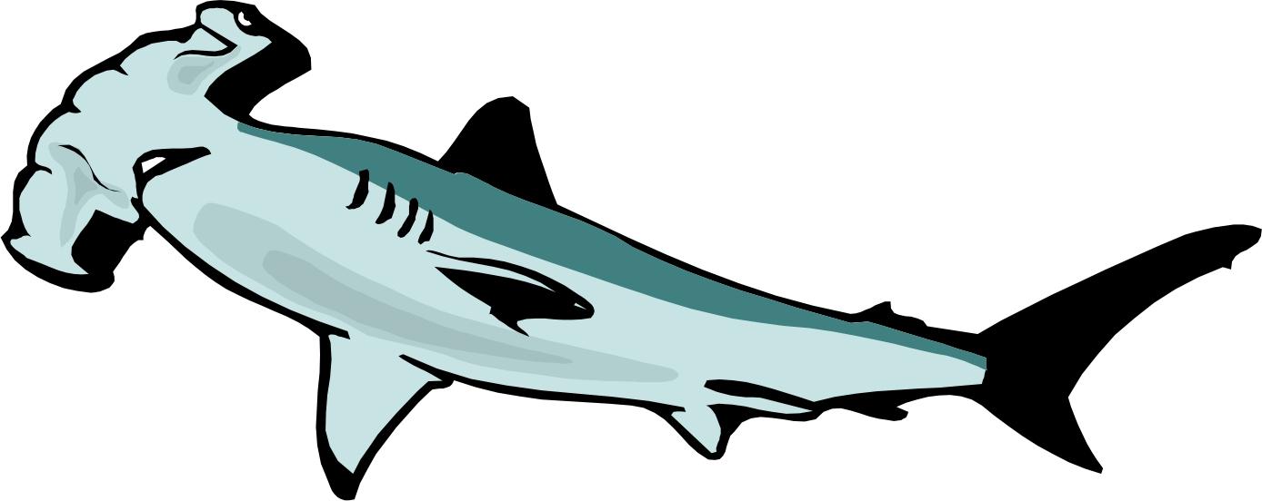 Hammer shark clipart clipart
