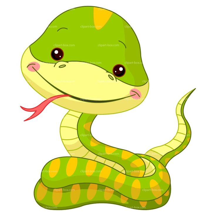 Pictures of cartoon snakes clipart clipartix