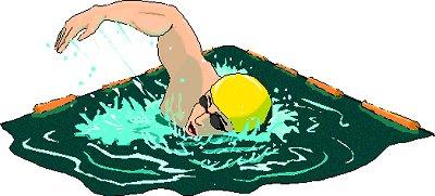 Free swimming clip art clipart image 9
