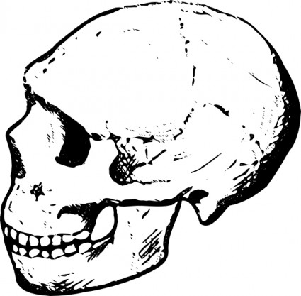 Skull clip art free black and white free vector for free download