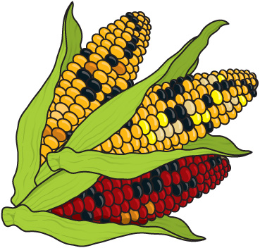 Corn toprn farm clip art images for tattoos