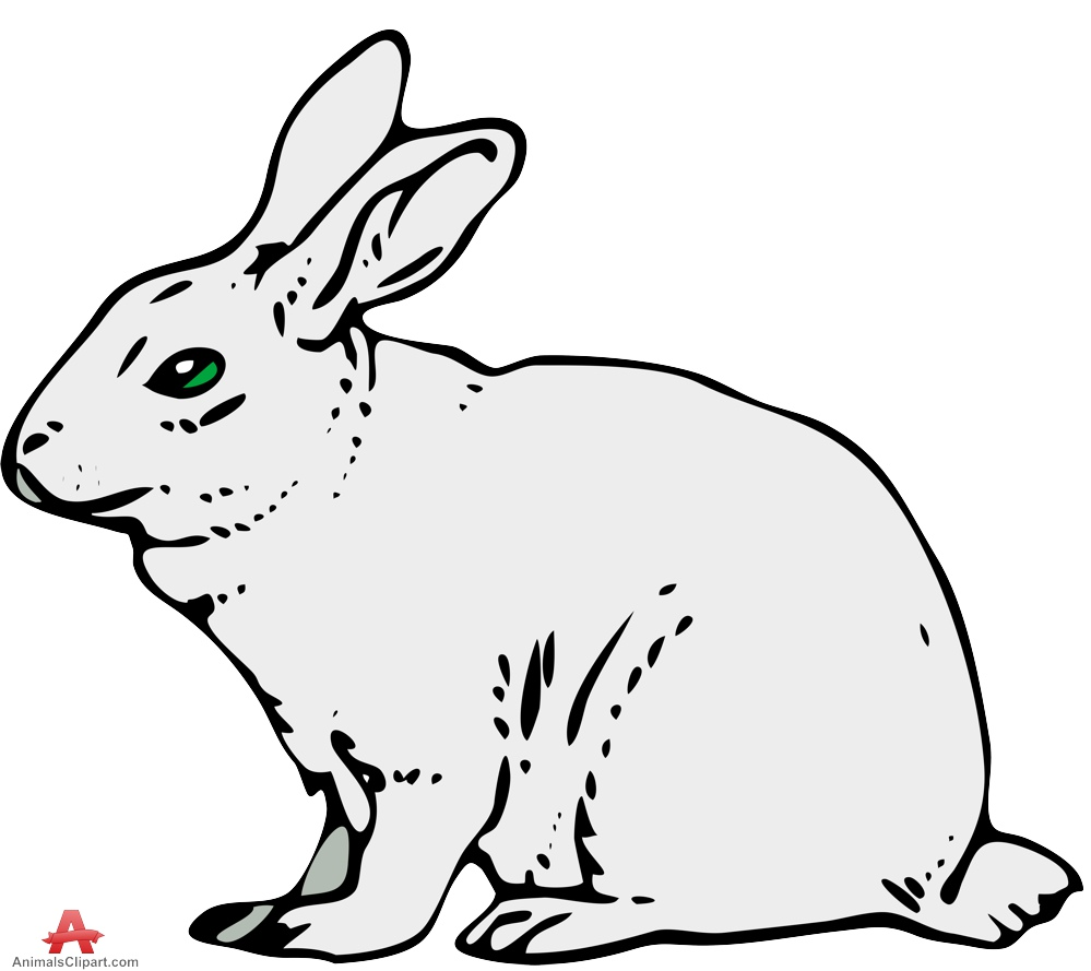 Gray rabbit clipart free clipart design download