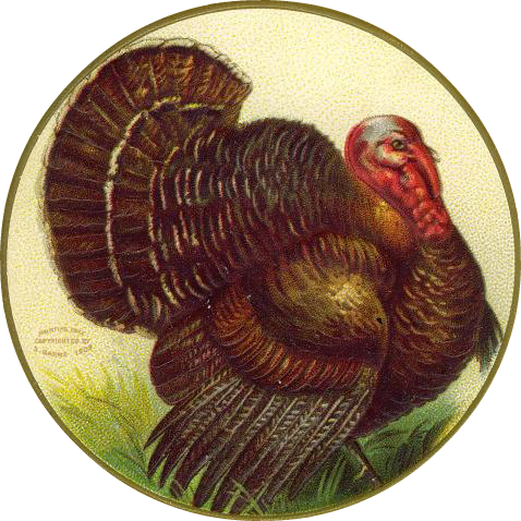 Thanksgiving turkey free clip art from vintage holiday crafts blog archive free