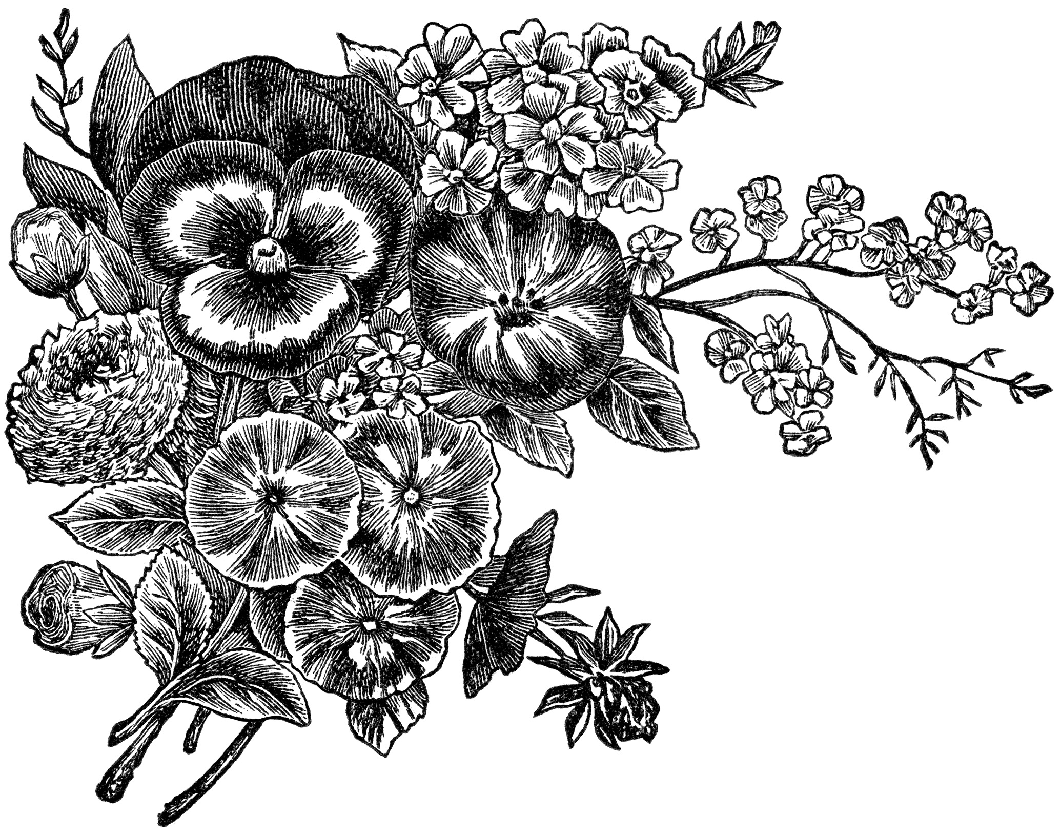 Flower  black and white bunch of flowers black and white clipart kid