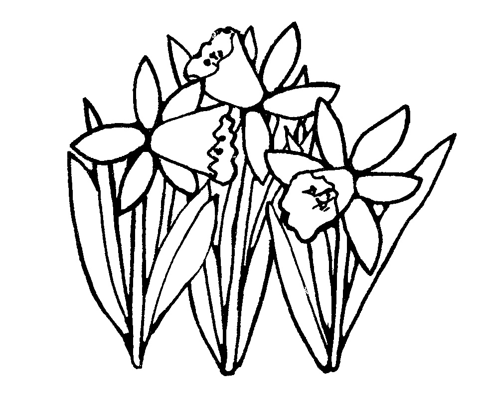 Flower  black and white flower clipart black and white free download happy birthday 4