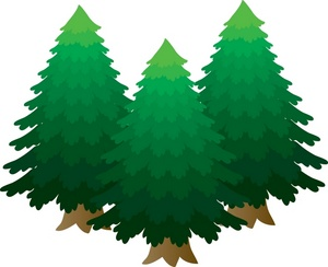 Pine tree clip art high quality 2