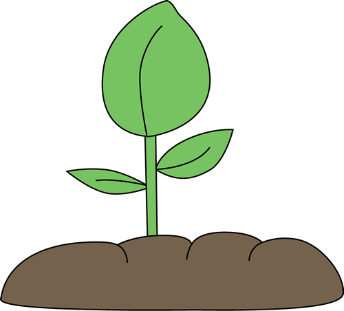Cartoon plant clipart kid