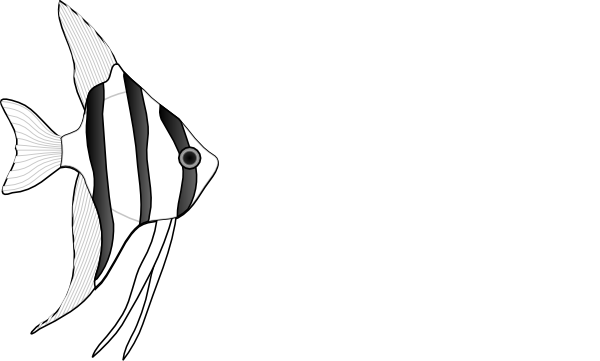 Fish  black and white angel fish clipart black and white clipartfest 2