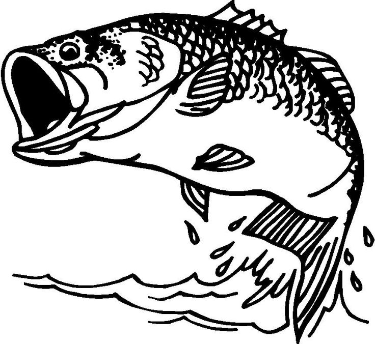 Fish  black and white bass fishing clipart black and white clipartfest