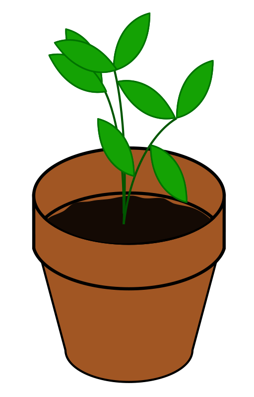 Growing plant clipart free images