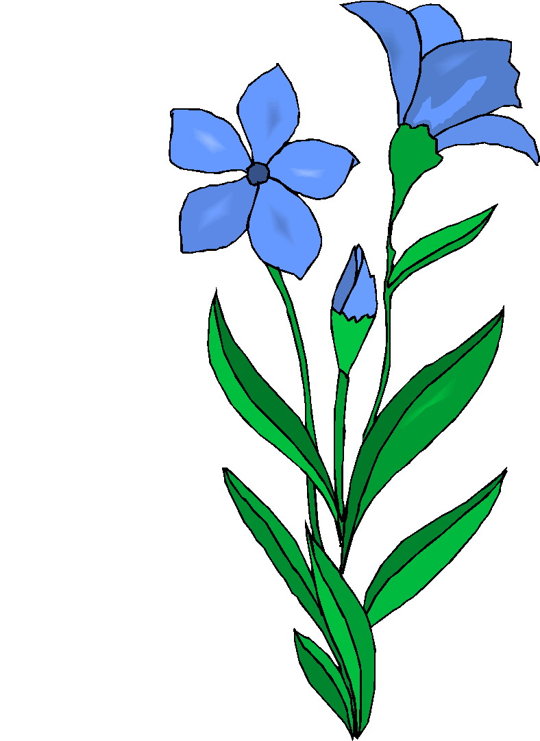 Parts of a plant clipart free images 4