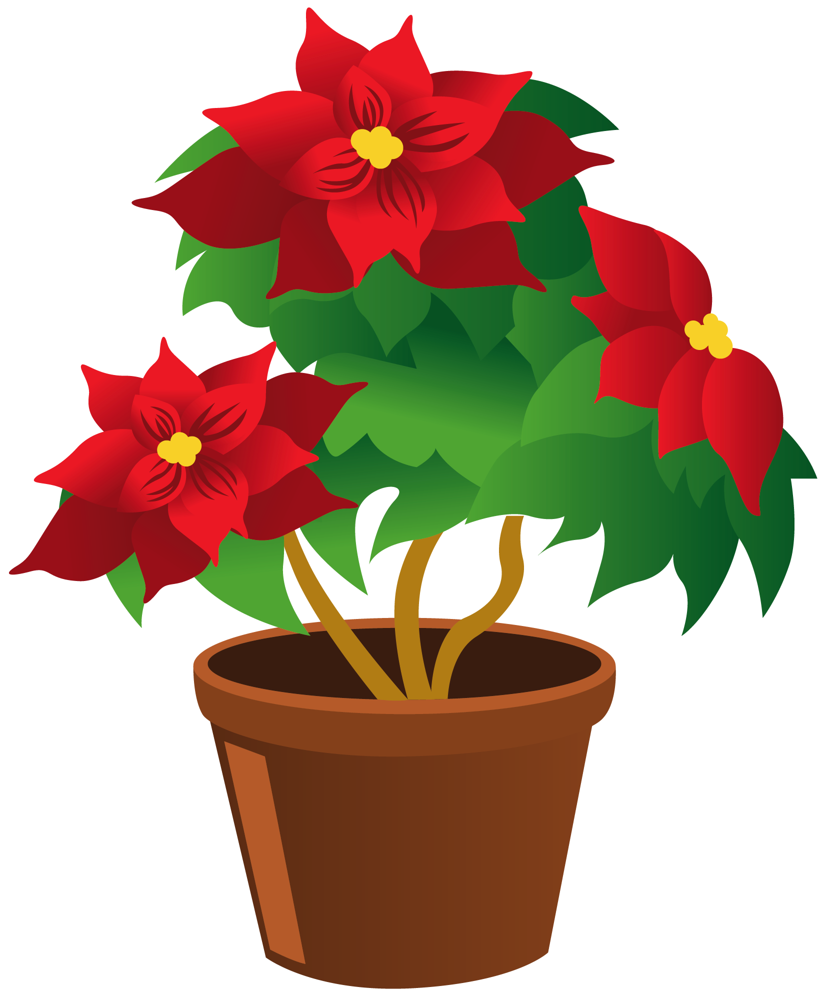 Potted plant clipart kid