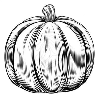 Pumpkin  black and white pumpkin black and white pumpkin clipart 2 3
