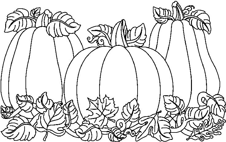 Pumpkin  black and white pumpkin clipart black and white 2 3