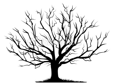 Tree  black and white bare tree clip art 6 2