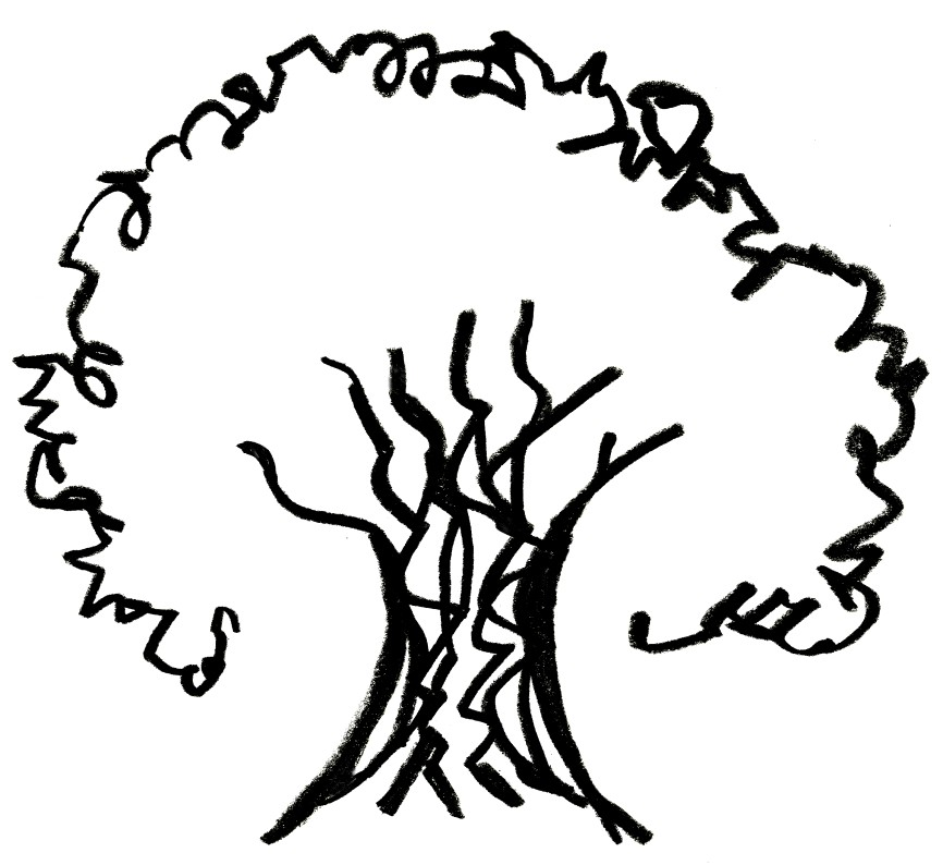 Tree  black and white tops of sycamore trees clipart clipground
