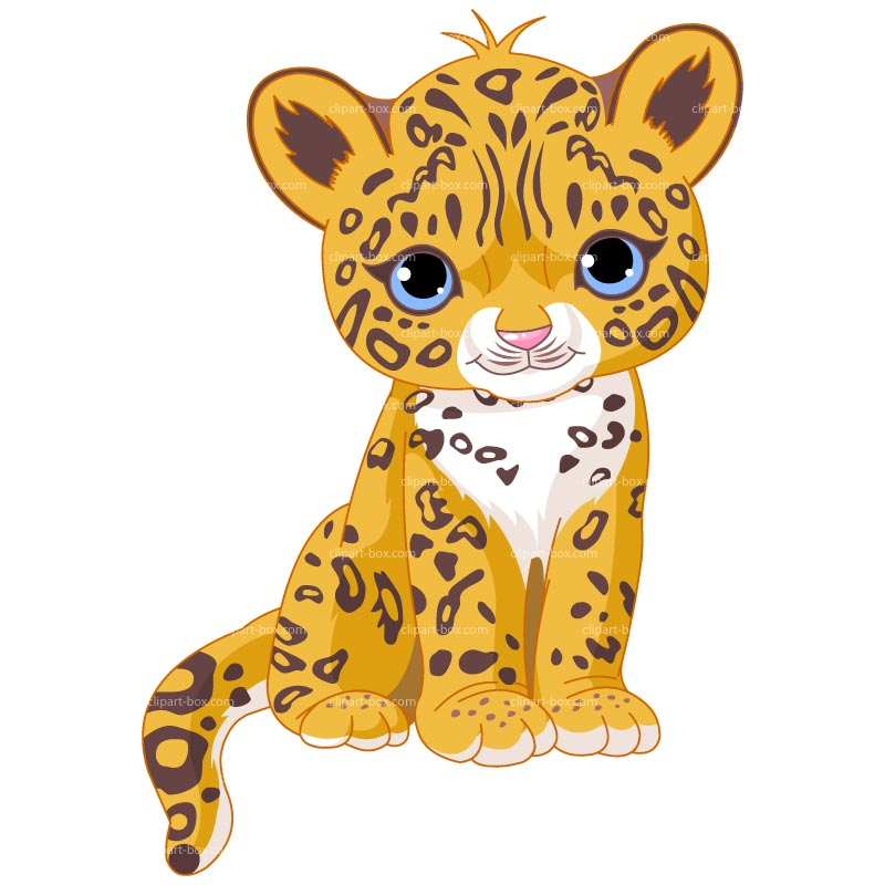 Cheetah clipart baby jaguar sit free vector design drawing