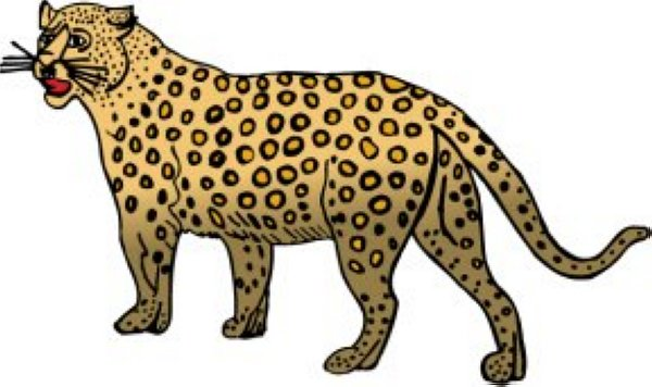 Free cheetah clipart the cliparts
