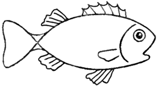 Drawing a cartoon fish with easy sketching instructions how to png