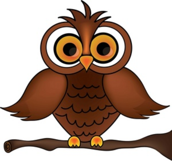cartoon owl Wise old owl cartoon on a tree branch smu free images at png