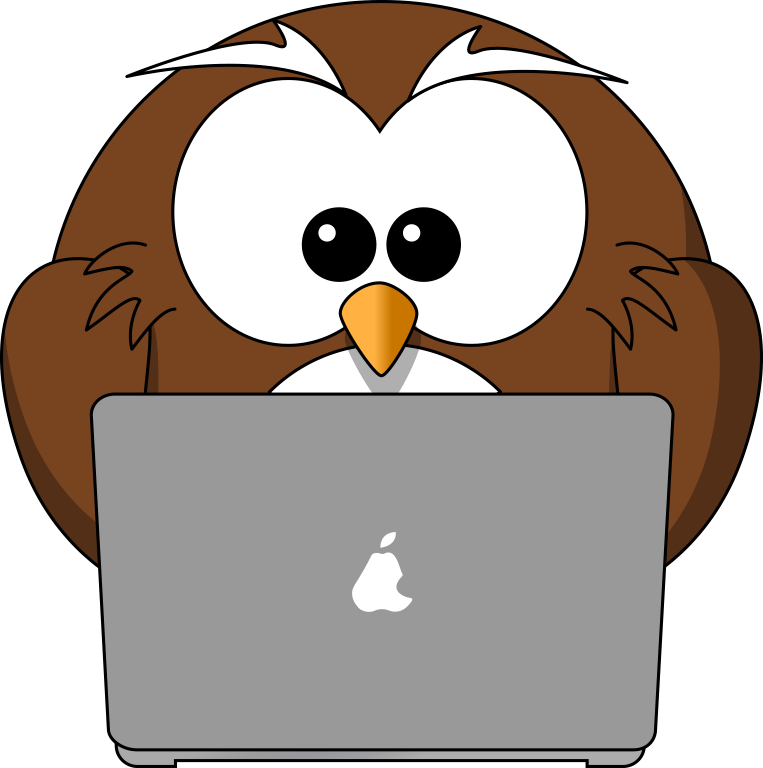 Cartoon owl and laptop tim png