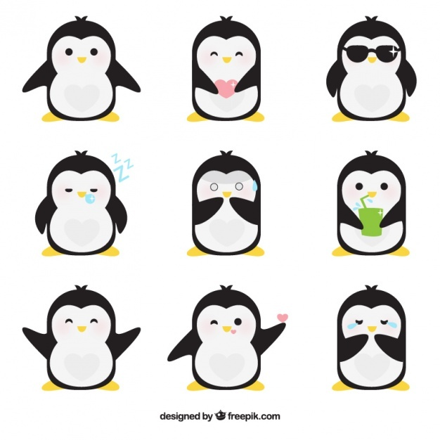 cartoon penguin Penguin vectors photos and psd files free download jpg