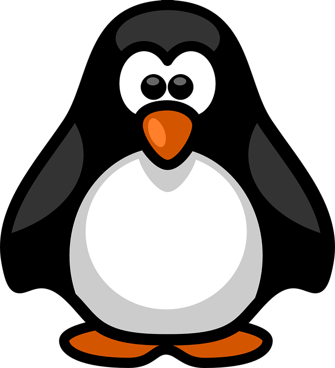 cartoon penguin Free photo white black flightless aquatic birds penguin max pixel png