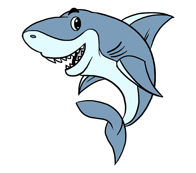 How to draw a cartoon shark easy step by drawing guides png