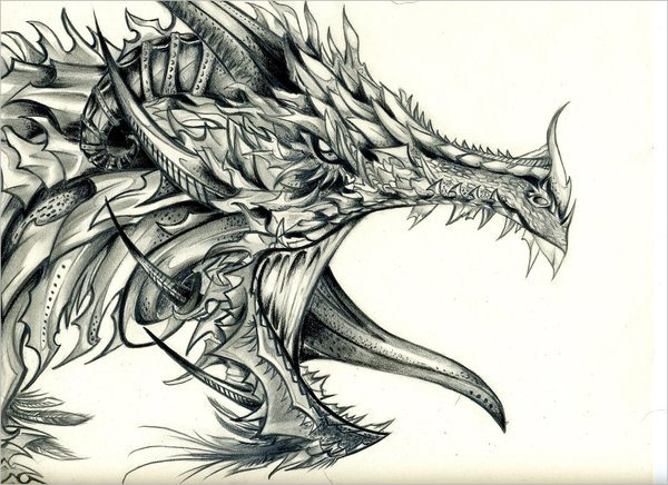 Realistic dragon drawings free  jpg