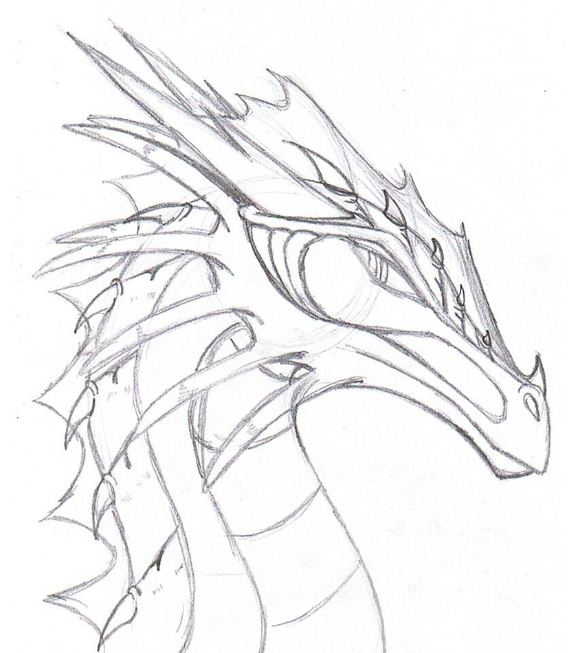 Realistic dragon drawings google search to draw jpg