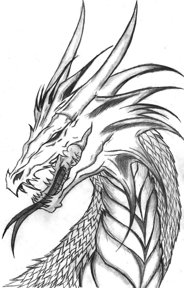 Topol dragon drawings head drawing jpg