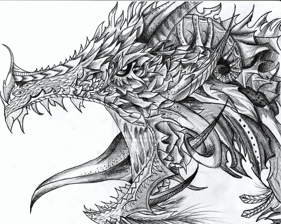 Stunning and realistic dragon drawings from around the world jpg 4