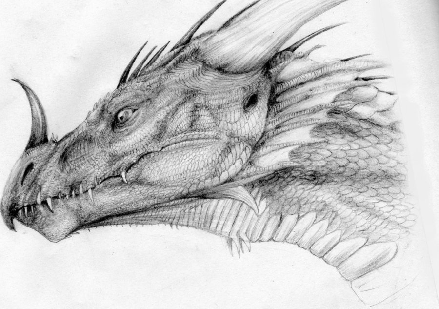 Dragon drawings free download clip art on jpg