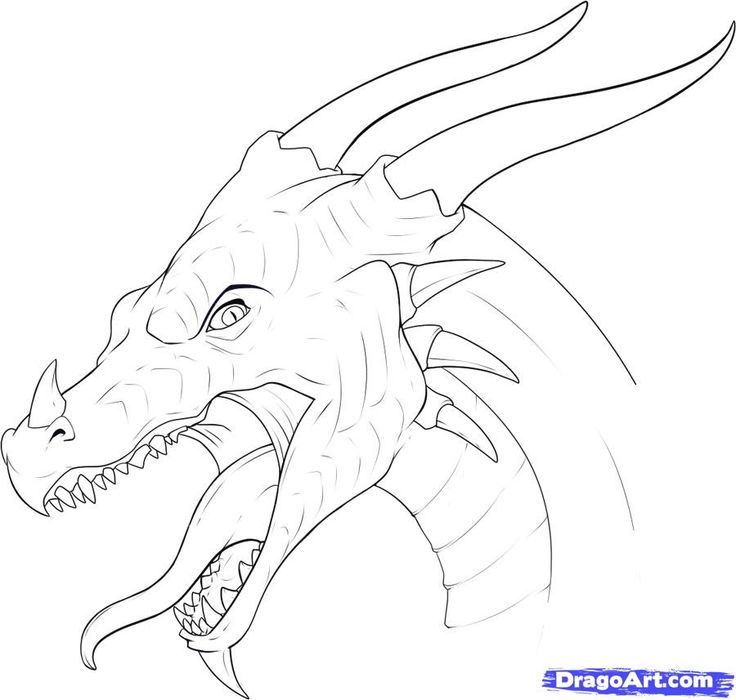 Dragon drawings ideas on art how to jpg