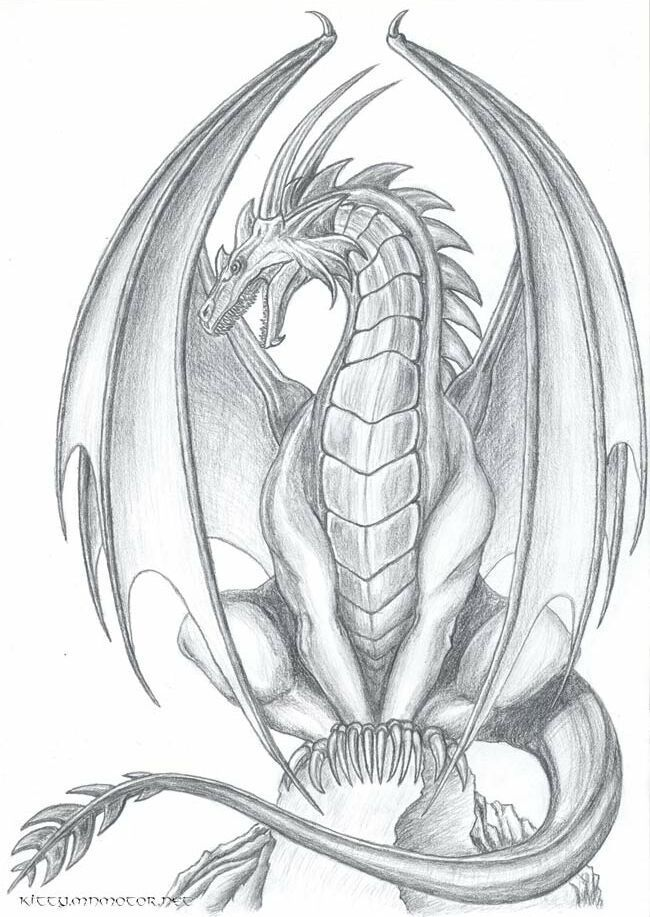 Dragon drawings images on jpg
