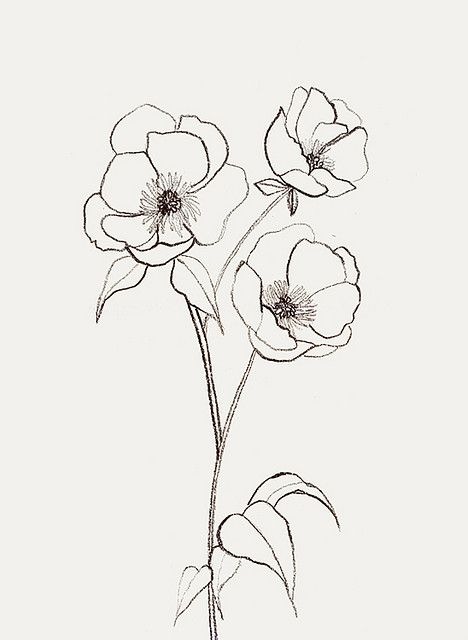 flower drawing Draw a simple flower jpg