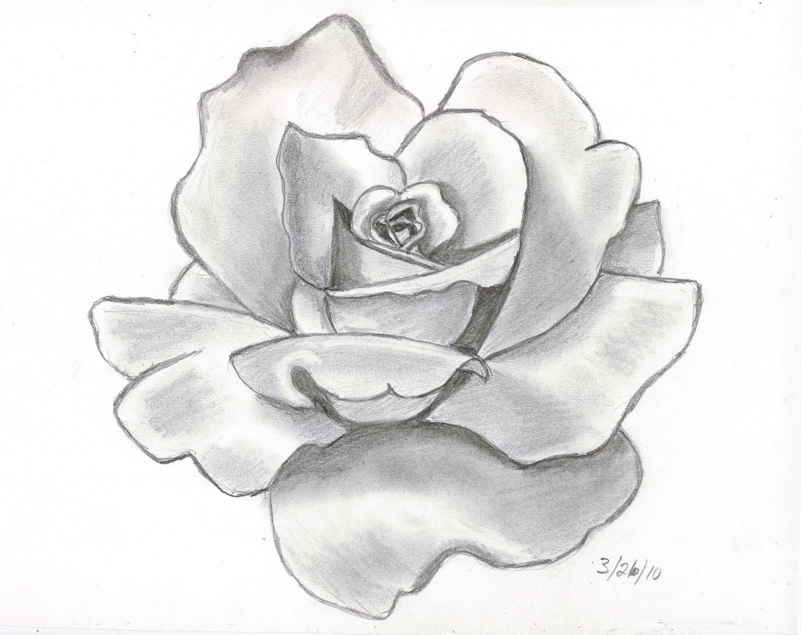 flower drawing Pencil drawings this is my first attempt at doing a shaded jpg