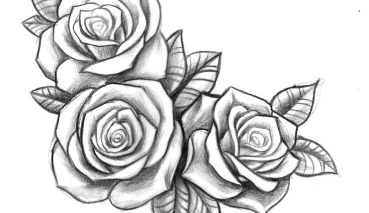 rose drawing Rose sketch drawing tattoo ideas on jpg
