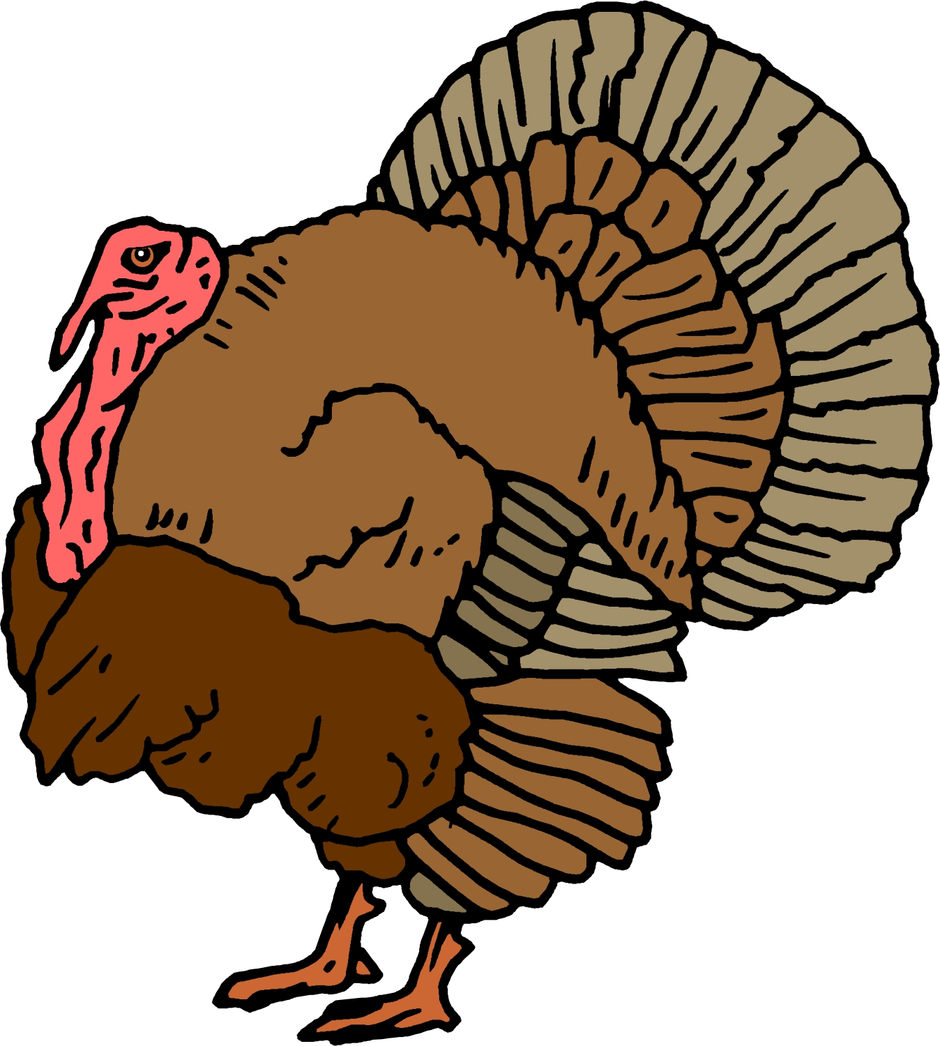Moving turkey cliparts free download clip art jpg
